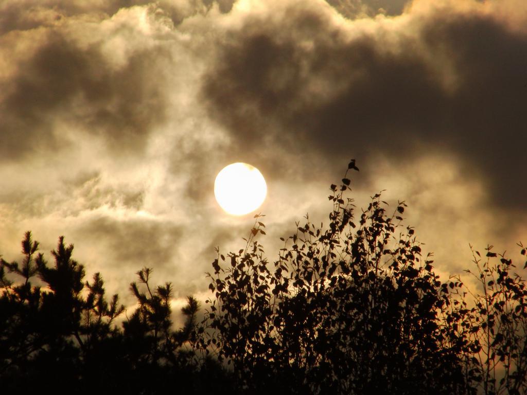 27.10.2014 - Tiefstehende Spätnachmittagssonne + Nebelwolken @ Gleisdorf (STMK)