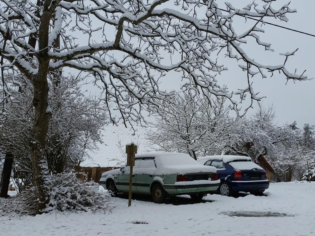 19.03.2018 - Winterlicher Morgen im Frühling @ Pischelsdorf (STMK)