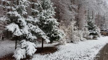 19.11.2018 - 1. Wintereinbruch bzw. Schneeschub @ Pischelsdorf (STMK)