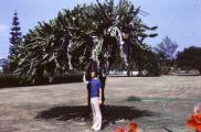 Cuba 1978 - 1980 223.jpg
