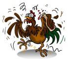 pollo_cocido.jpg