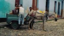 pferdekarre,2.jpg