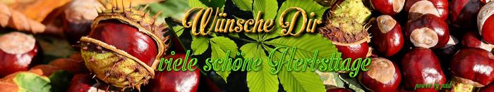 www.a-f-a-forum.de