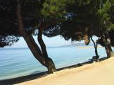 Strand 1-Zaostrog.jpg