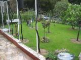Haus Rosi Garten 1.jpg