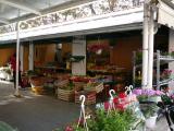 Forum15 Markt.jpg