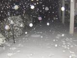Winter 2012 Feb (45) (Medium).JPG