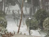 Winter 2012 Feb (11) (Medium).JPG