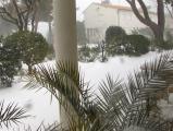 Winter 2012 Feb (66) (Medium).JPG