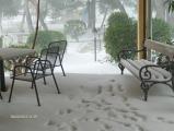 Winter 2012 Feb (50) (Medium).JPG