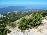 Kroatien Juli 2013 571.JPG
