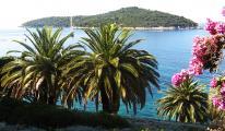 Kroatien Juli 2013 299.JPG