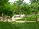 Village-13.jpg