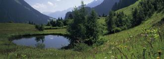 149_07-header-tirol.at5-kl.jpg