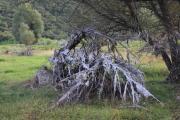 140811_IMG_0851_Zman-Malo-Jezero.JPG