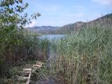 Kroatien Zaostrog 2008 090.jpg