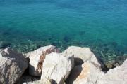 Sommer 2009 Kroatien 547.jpg