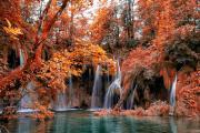 IMG_0571_fall.jpg