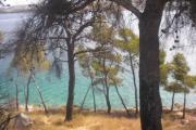 Kroatien Sommer 2010 435.jpg