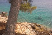 Kroatien Sommer 2010 438.jpg