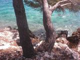 Sommer 2011 159 klein.jpg