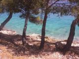 Sommer 2011 089 klein.jpg