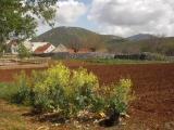 Ostern 2012 Kroatien 037.JPG