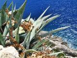 Kroatien 2012 415.JPG