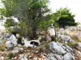 Kroatien 2012 379.JPG