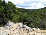 Kroatien 2011 Insel Brac 279.JPG