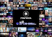 Papaya-2012-Selected-HQ3.jpg