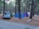 Camp Basko Polje 1.JPG