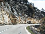 Kroatien 2011 Insel Brac 369.JPG