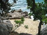 Kroatien 2011 Insel Brac 009.JPG