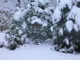 Winter 2009 005.JPG