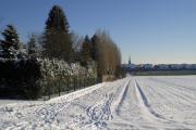 Schnee 6.jpg