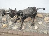 Wachhund_2361.jpg