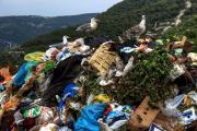Müllhalde.jpg