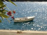Povlja_Boat.jpg