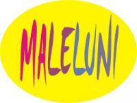 MALELUNI_Grafik1