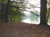 See in Rosenau.jpg