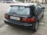 EG Shell 2012-06-23141201.jpg