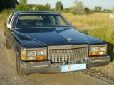 Cadillac_Fleetwood_1981_01.jpg