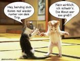 Katze_vs_Maus.jpg