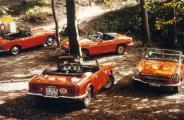 1980_S800-Treffen-CH_16.jpg