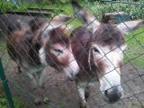 20120715_004629.jpg