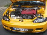 HCC 2009 029.JPG