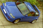 CRX Silhouette-blau-Vogel.jpg