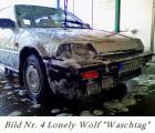 04lonely wolf.jpg