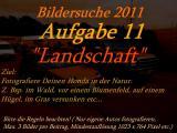 landschaft11.jpg